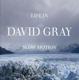 Gray,David :Life In Slow Motion