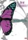 Iron Butterfly :In-A-Gadda-Da-Vida