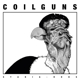 Coilguns :Stadia Rods