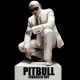 Pitbull :Swagged Out