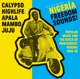 Soul Jazz Records Presents/Various :Nigeria Freedom Sounds! (1960-1963)
