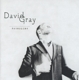 Gray,David :Foundling