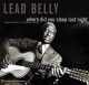 LeadBelly :Where Did You Sleep Last Night: Lead Belly Legacy