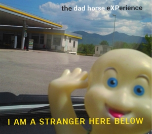 The Dad Horse Experience