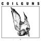 Coilguns :EP A&B 2001-2012