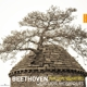 Quatuor Mosaiques :Beethoven The Late Quartets
