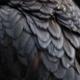 Ex People :Bird