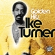 Turner,Ike :Golden Hits