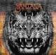 Santana :Santana IV