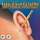 Butthole Surfers :Electriclarryland