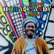 Andy,Horace :Good Vibes (Remastered 2LP Gatefold)