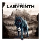 Kontra K :Labyrinth