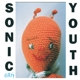Sonic Youth :Dirty