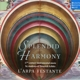 L'Arpa Festante/Hesse,Christoph :Splendid Harmony-17th Century instrumental Music
