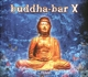 Buddha Bar Presents/Various :Buddha-Bar X