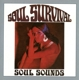 Soul Survival :Soul Sounds (Remastered And Sound Improved)