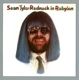 Tyla,Sean :Redneck In Babylon (Remastered And Sound Improved)