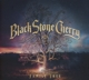 Black Stone Cherry :Family Tree