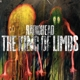 Radiohead :The King Of Limbs