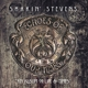Stevens,Shakin' :Echoes Of Our Time