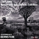 Bernstein,Leonard/New York Philharmonic Orchestra :Bernstein dirigiert Copland