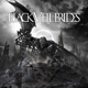 Black Veil Brides :Black Veil Brides