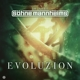 S�hne Mannheims :Evoluzion-Best Of