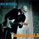 Mitchell,Zed :Summer In L.A.