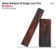 Baldych,Adam & Lien,Helge Trio :Brothers