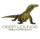 Picotto,Mauro :Deep Lounge