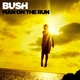Bush :Man on the Run (Deluxe Version)