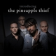 The Pineapple Thief :Introducing The Pineapple Thief