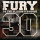 Fury In The Slaughterhouse: 30-The Ultimate Best of Collection