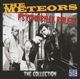 Meteors,The :Psychobilly Rules!