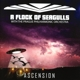 A Flock Of Seagulls :Ascension-Orchestral Versions Of Hits