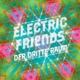 Dritte Raum,Der :Electric Friends (LP)