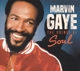 Gaye,Marvin :The Prince Of Soul