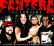 Pantera :The Lowdown