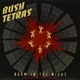 Bush Tetras :Boom In The Night