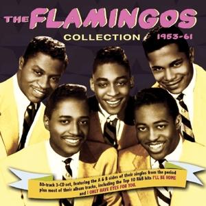 FLAMINGOS,THE