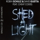 Schulz,Robin & Guetta,David Feat. Cheat Codes :Shed A Light (2-Track)