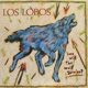 Los Lobos :How Will The Wolf Survive
