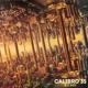 Calibro 35 :Decade