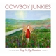 Cowboy Junkies :Sing In My Meadow-The Nomad Series 3