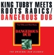 King Tubby Meets Roots Radics :Dangerous Dub (The Original Dub Classic)