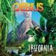 Cassius :Ibifornia (Vinyl)
