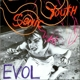 Sonic Youth :Evol