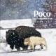 Poco :Forgotten Trail 1969-74