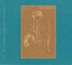 XTC :Skylarking CD/Blu-Ray