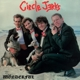 Circle Jerks :Wonderful